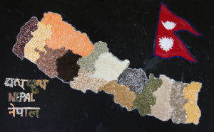 Nepal Map made with different types of pulses